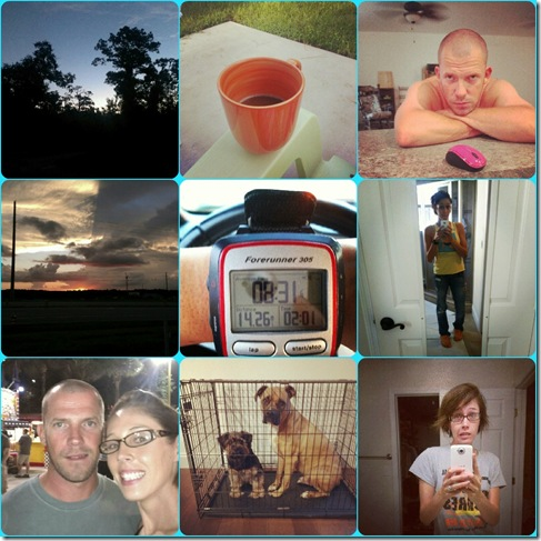 OCT collage 1